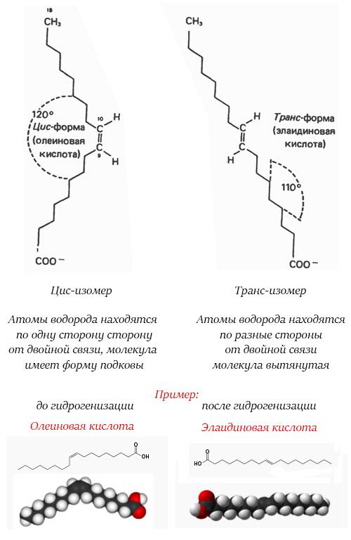 prostranstvennie-tsis-trans-izomeri-imeet